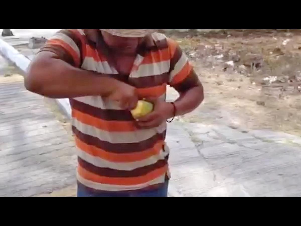 An Awesome Way To Cut Up A Mango Nova 1069