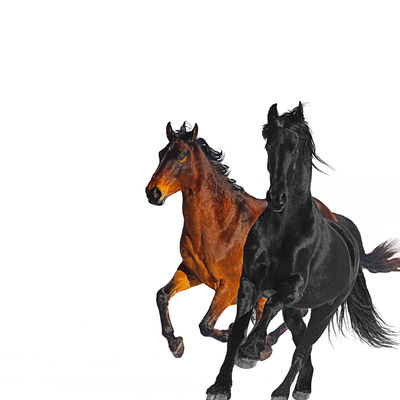 Old Town Road (Remix) - Lil Nas X