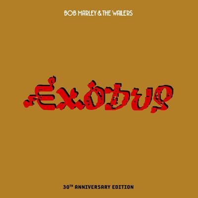 One Love / People Get Ready - Bob Marley