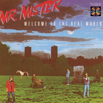 Broken Wings - Mr Mister