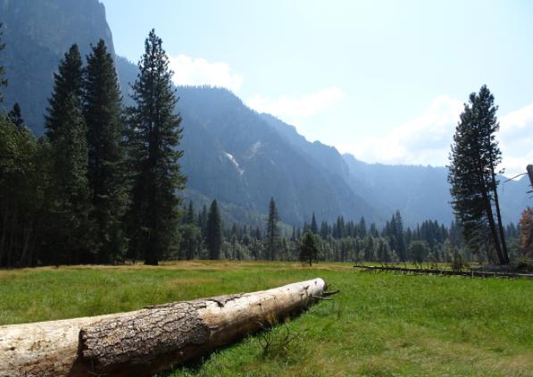 Yosemite Valley Travel
