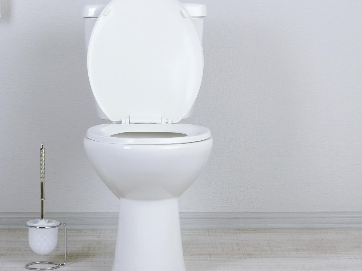 This is the most hygenic way to go to the toilet | Nova 100