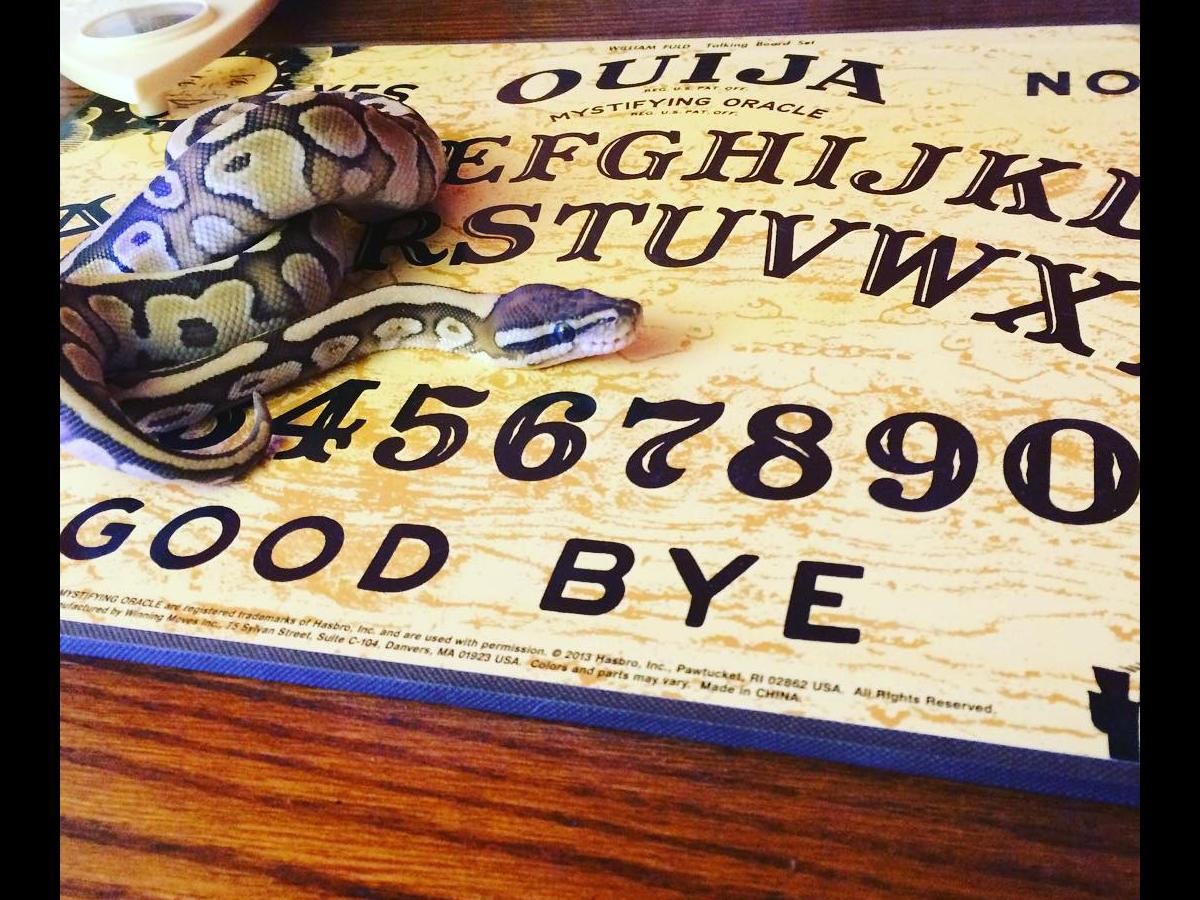 Girl POSESSED by demons after playing Ouija board phone app