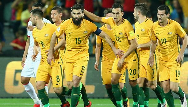Bert van Marwijk to coach Socceroos at World Cup