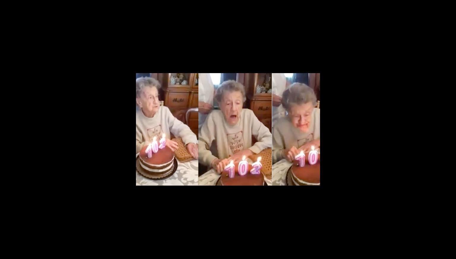 Birthday Cake False Teeth