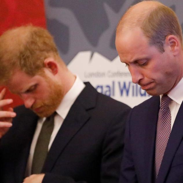 Prince Harry and Prince William reportedly had spat over Meghan Markle