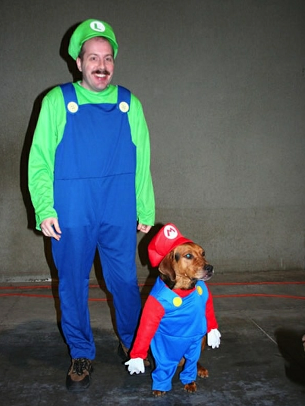 The Best Dog Halloween Costumes Nova Fm